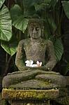 Religion_g302-Statue_Of_Buddha_p122893